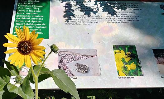 Native Garden_Interpretive Signs.jpg