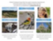 Friends Brochure Page-002.jpg