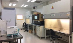 cell culture room_edited