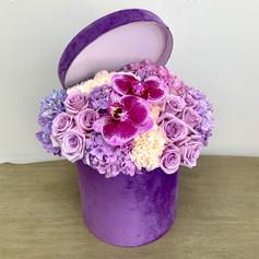 Purple Orchid Box Mix