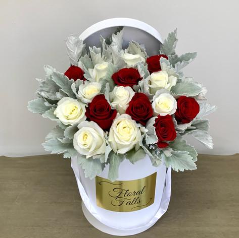 Dusy Miller & 2 Dz Roses Box