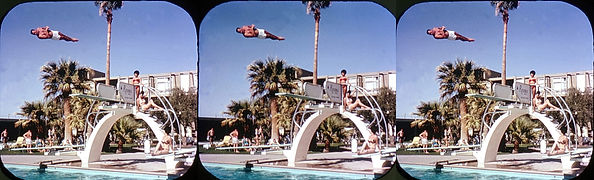 A1561 diver in Las Vegas, Nevada_by Char
