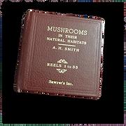 Mushroom%252520reel%252520book%2525201_e