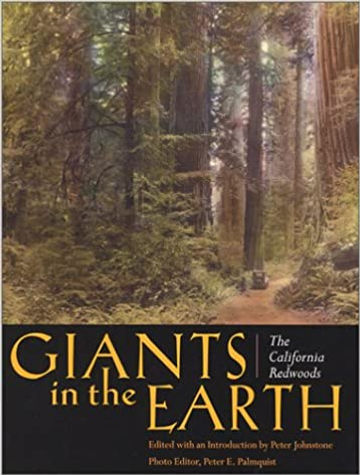 Giants in the Earth - photos from Peter