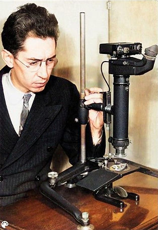 McKay with Carl Zeiss microscope.jpg