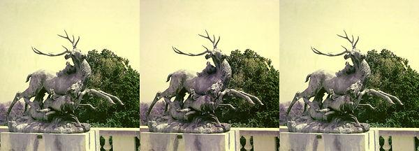 1952 Academy HM Mule Deer by Louis Damma