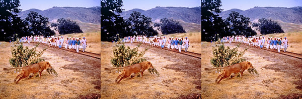 1951 Bwana Devil shoot 9.jpg