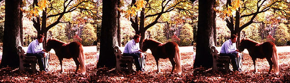 A Boy and his Horse by David Hutchison.j