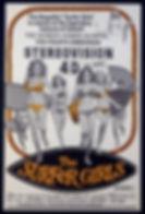 Surfer Girls 4D movie poster.jpg