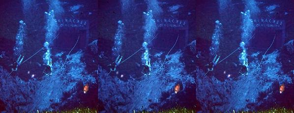 Wikiwachee by H.C. McKay.jpg