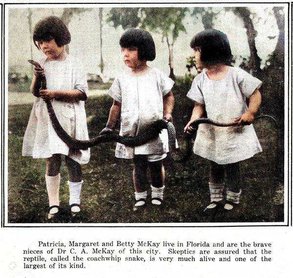 Herbert C McKays daughters Patricia Marg