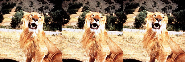1951 Bwana Devil shoot 10 .jpg