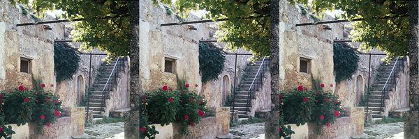 446-7 Ferwerda Kreta Arcadi geraniums en