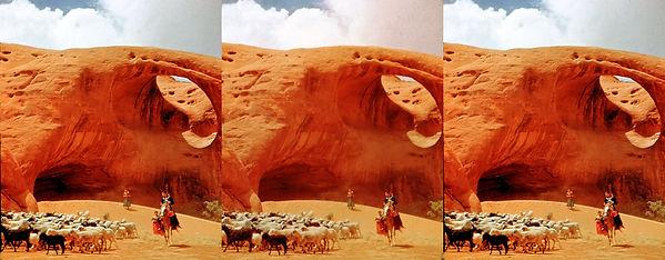 1951 Academy StereOscar- Navajo Sheep Te