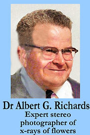 3-D Legends Hall of Fame Dr Albert G. Ri