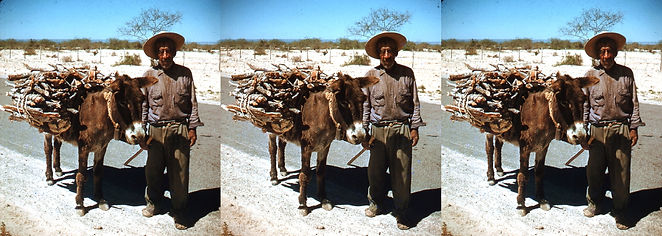 GeorgeMann_1961_Amigo_in_LaPaz.jpg