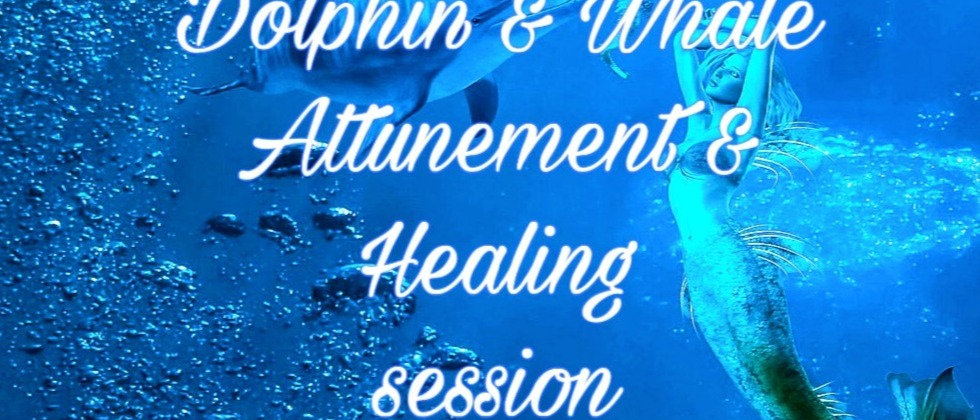 Dolphin & Whale Attunement & Healing session