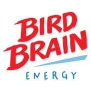 Bird Brain Energy