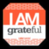 Le-Vel_DFT_IAM_Grateful.png