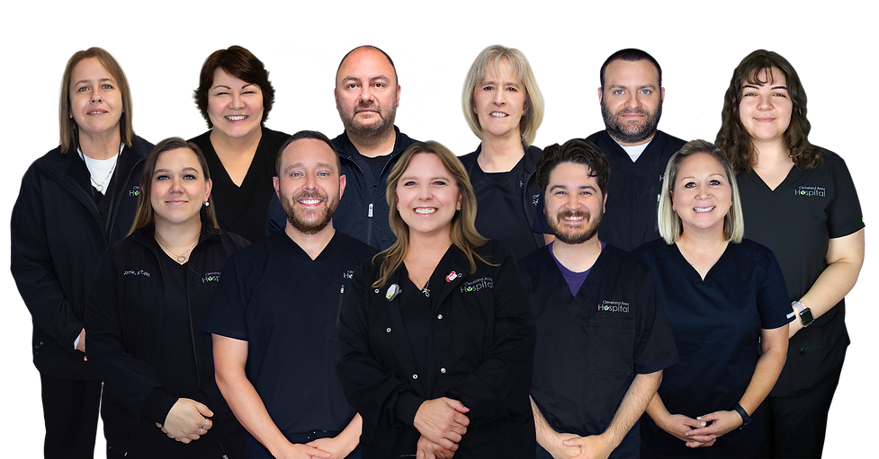 Radiology Group Photo 2020.png