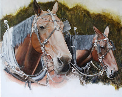carriage horses 1.jpg