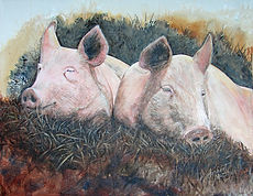 pigs contentment Lewes 2015.jpg