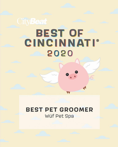 best of cincinnati 2020.jpg