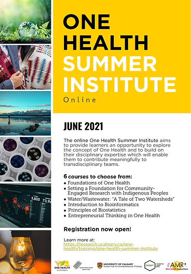 One Health Summer Institute.png