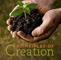 Principles of Creation square.jpg