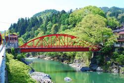藤波橋 新緑