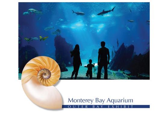 Monterey Bay Aquarium Program Concept