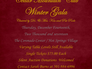 2nd Annual Cedar Mountain Winter Gala
