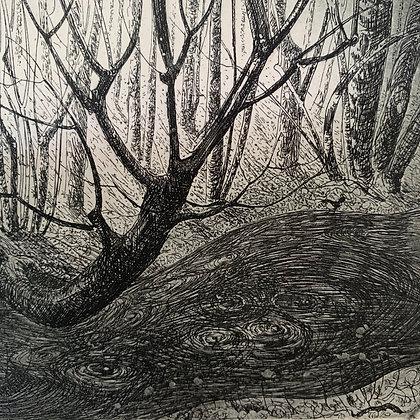 The stream, etching, 9 x 10cm