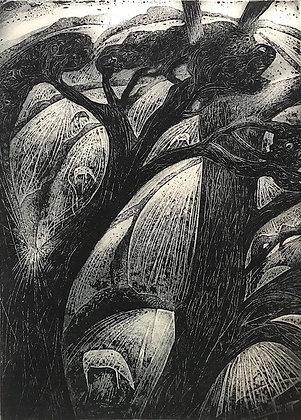 Fields, etching, 15 x 21cm