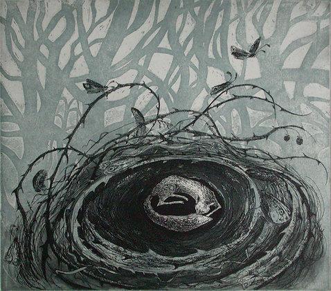 Fox-nest, etching, 24 x 27cm