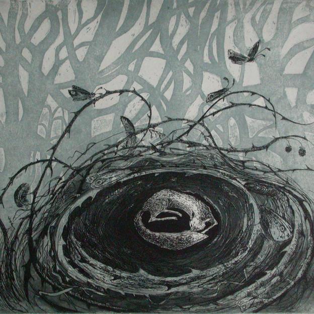 Fox-nest
