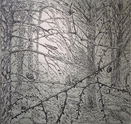 Nightjar, etching, 9 x 10cm