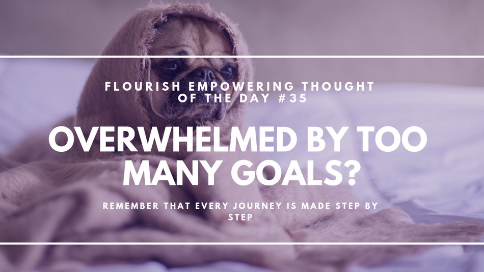 Overwhelmed by too many goals?