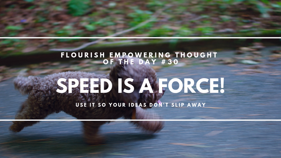 Speed is a force!