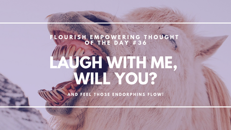 Laugh with me, will you?