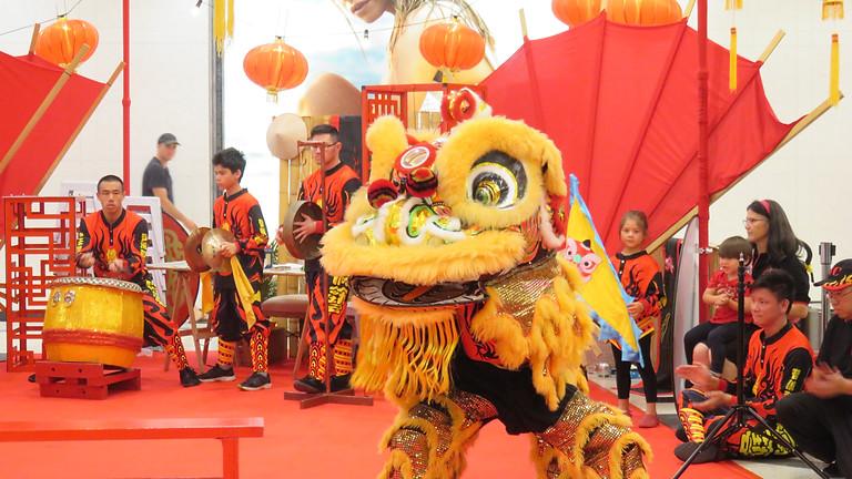 Children Lion Dance Workshop in Christchurch