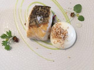 (10. Gün) San Sebastian: Kokotxa ve Sanat-Yemek İlişkisi