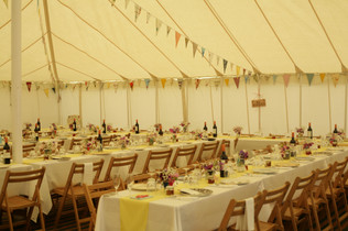 150500 - Bunting in 5040 Traditional Mar
