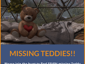 Missing Teddies!! Can you find them all?