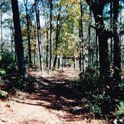 Walking Trail at Hot Springs RV Park