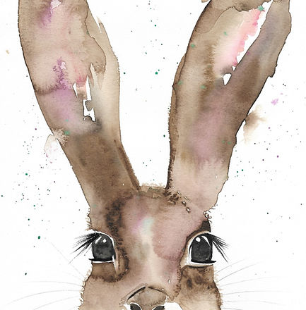 Bunny_edited_edited_edited.jpg
