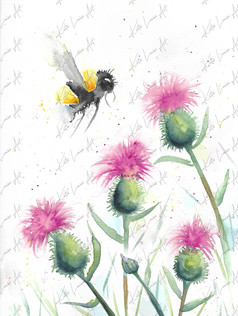 Bee & Thistles