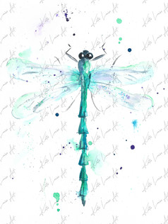 Dragonfly BE2