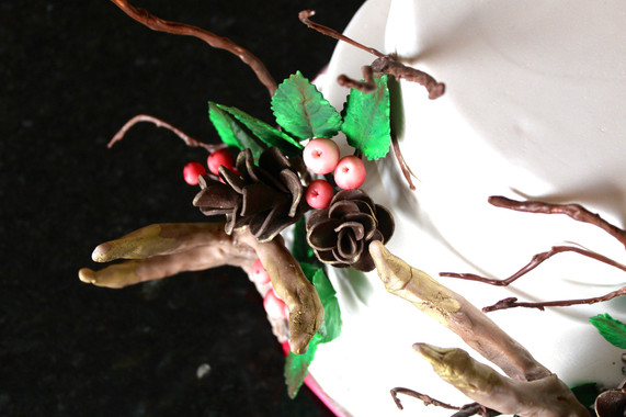 Cake_Specialty_12.jpg
