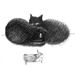 Cat and rat sleeping